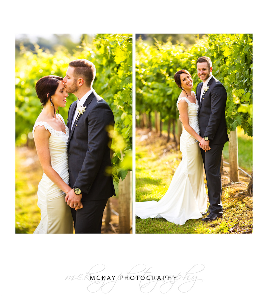 Bride groom photos at Centennial Vineyards in green grape vines