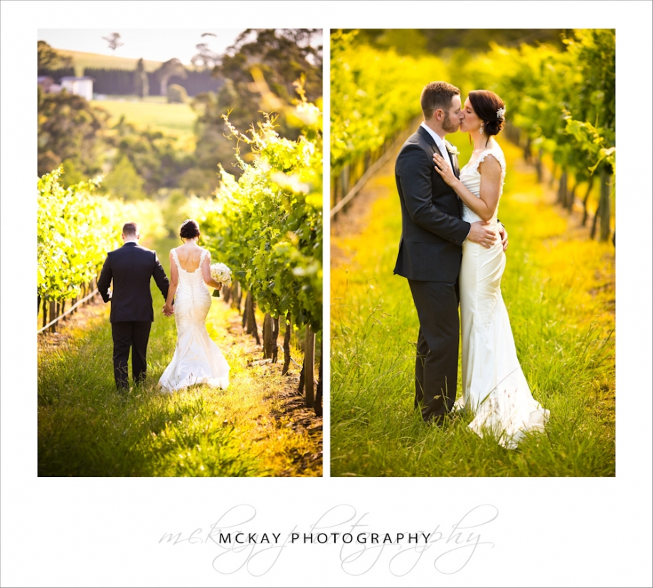 Bowral wedding in vineyard