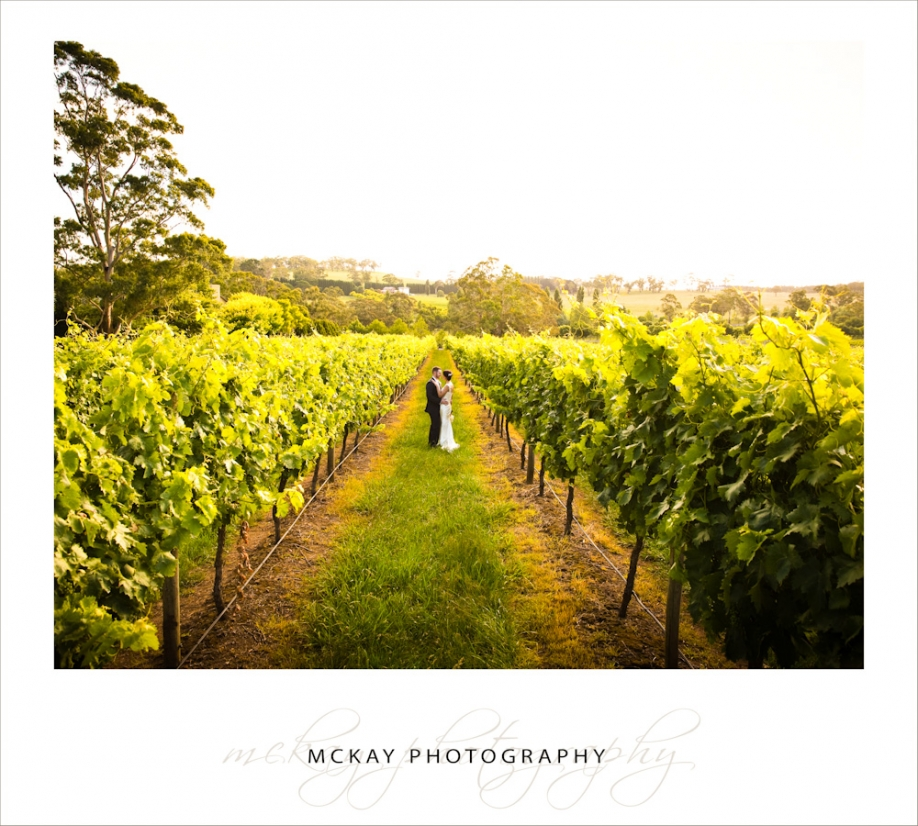 Centennial Vineyards wedding - McKay Photography