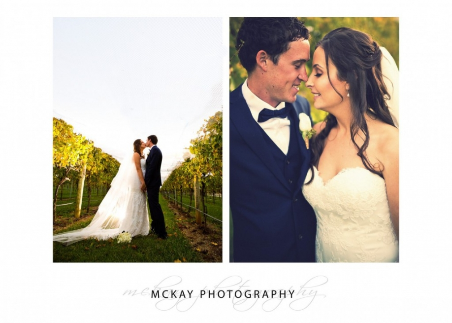 Bendooley Estate grape vines wedding photo