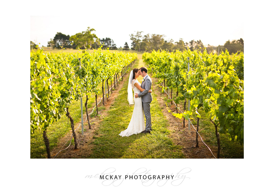 Chrissie & Brendan at Bendooley Estate grape vines rows