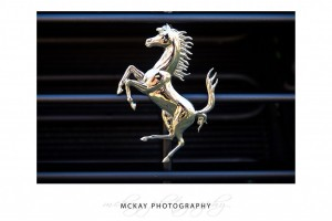 Ferrari car badge close up silver horse