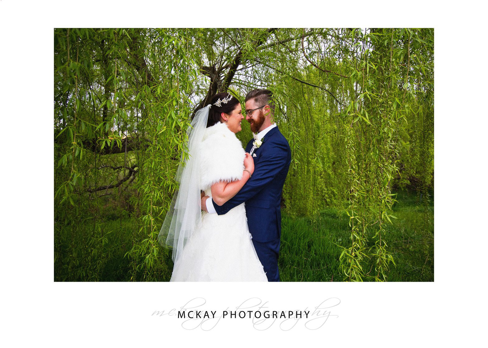 Photo in the willow tree