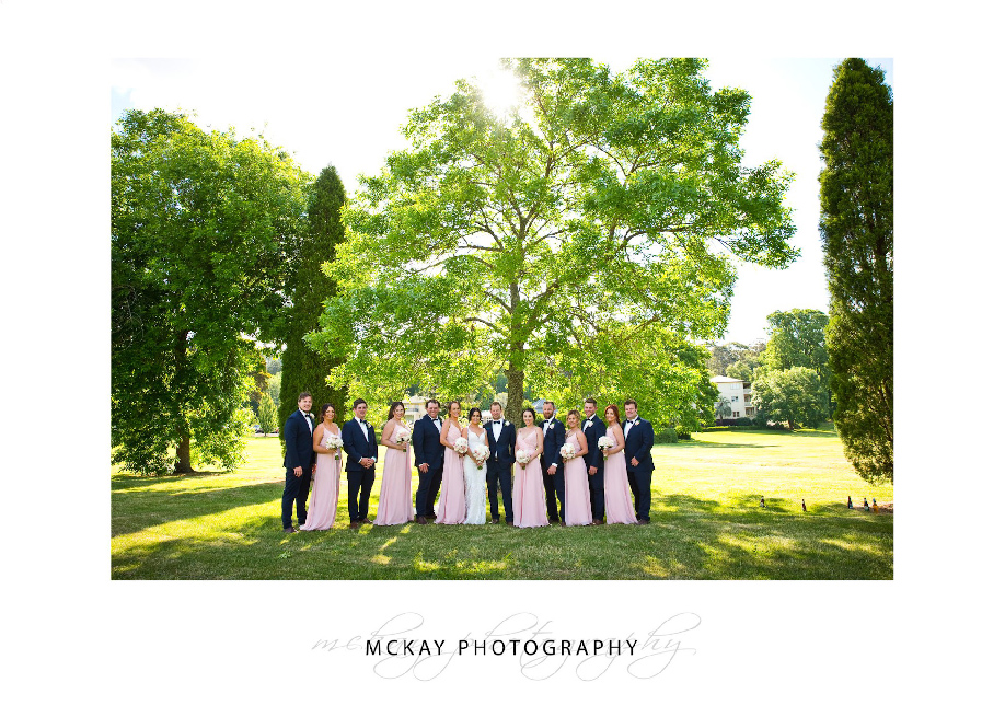 Bridal party under big green tree backlit