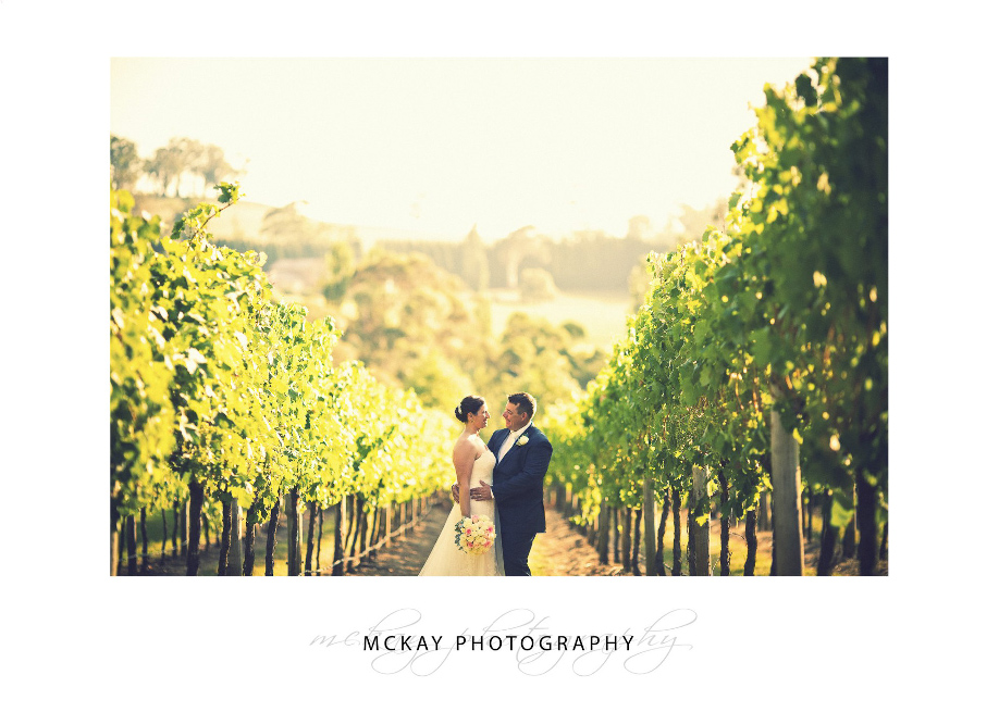 Long wide photo at Centennial Vineyards in Bowral wedding