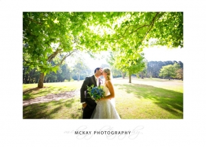Backlit leaf tree wedding photo colourful Bowral
