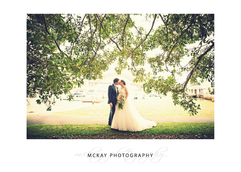 Lavender Bay wedding photo tree leaves backlit