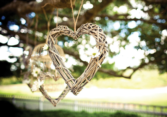 wedding hearts photo