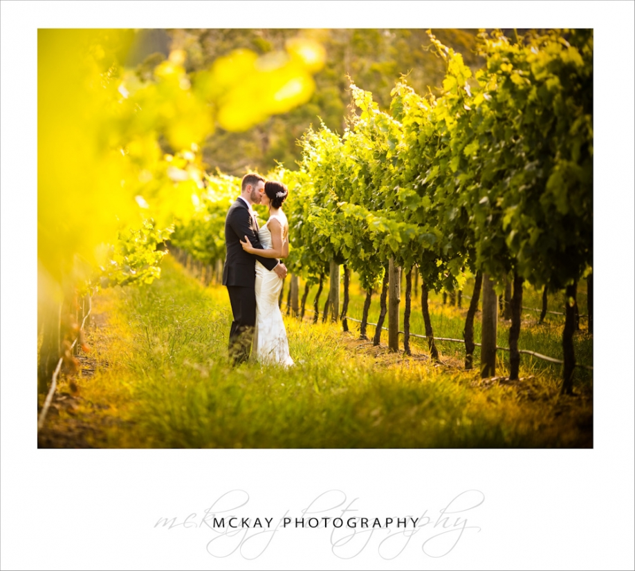 Centennial Vineyards wedding
