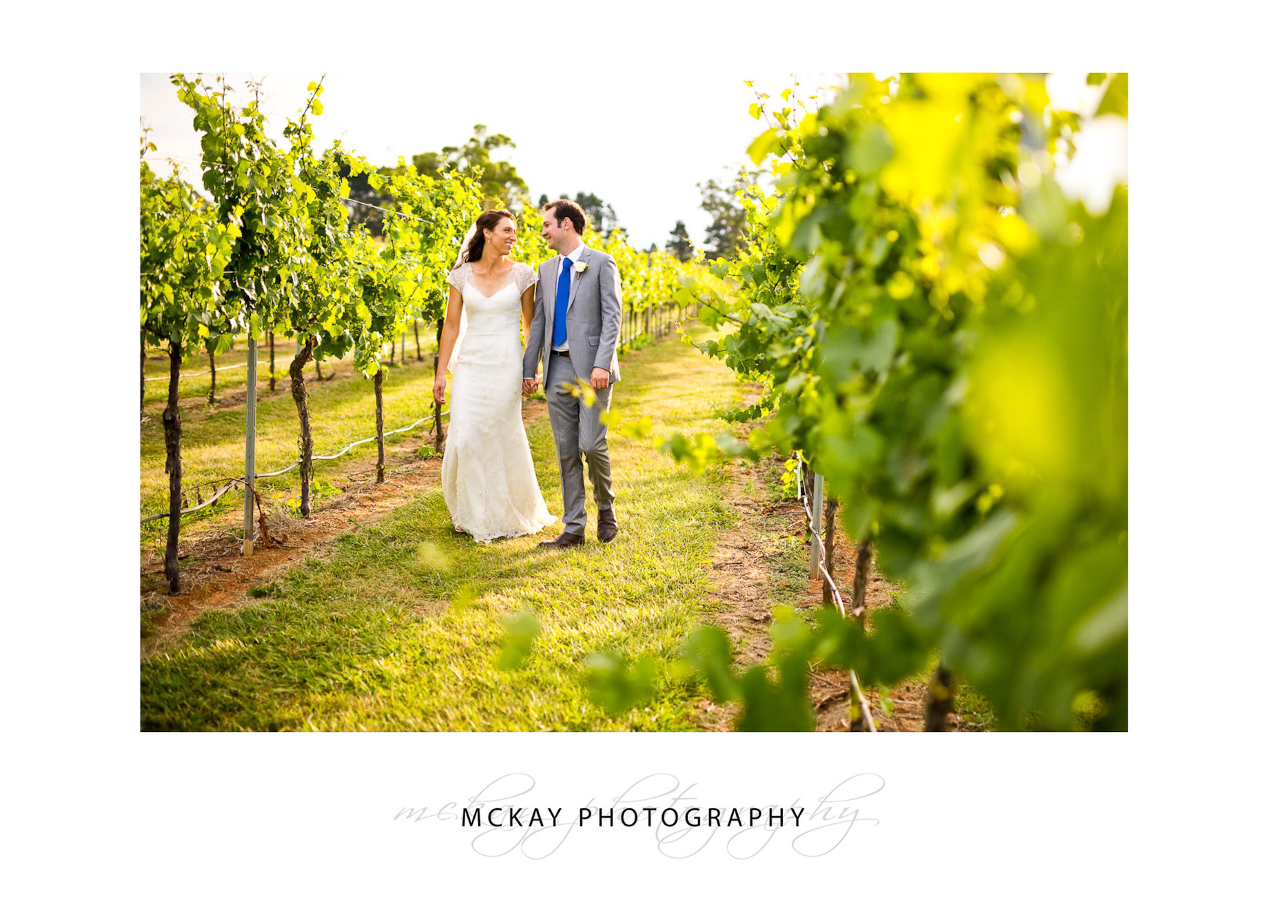 Walking in the grape vine rows at Bendooley Estate