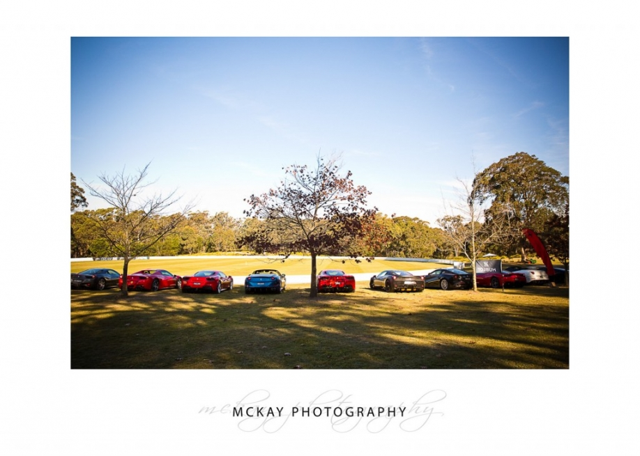 Line up of Ferrari cars at cricket oval - commercial photography Bowral