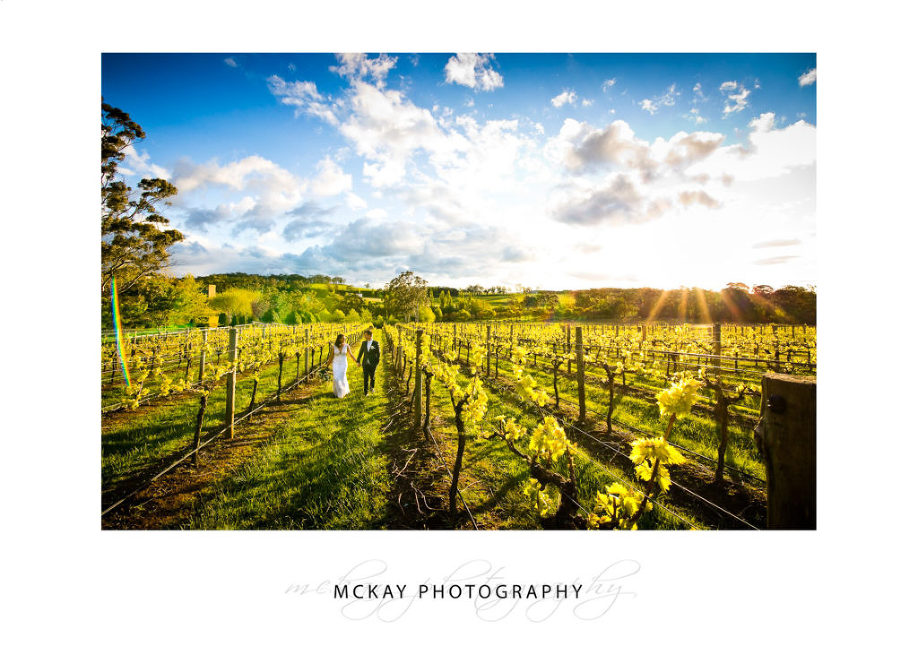 Kayleigh & Josh Centennial Vineyards Bowral wedding