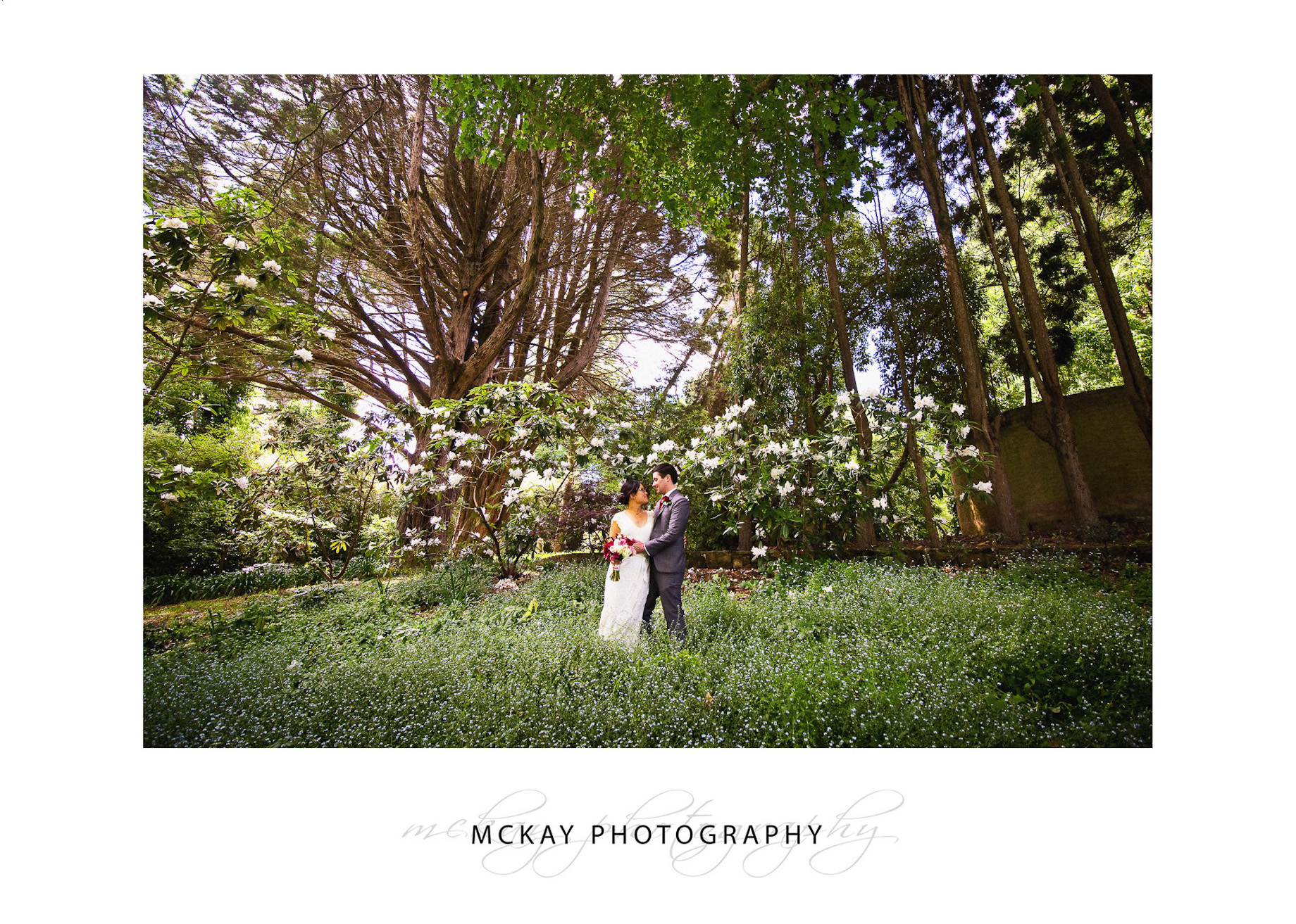 Field forget me nots wedding photos at the Ridge Bowral