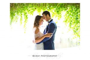 Backlit photo at Tumbling Waters Retreat wedding