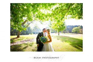 Backlit leaf tree wedding photo colourful Bowral