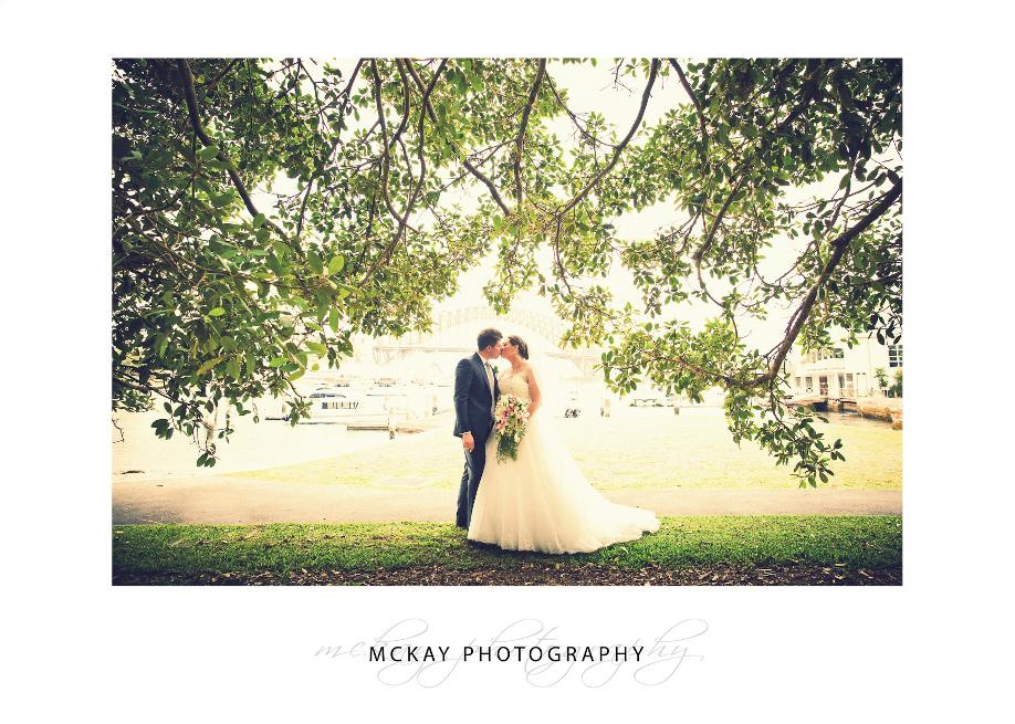 Lavender Bay wedding photo tree leaves backlit