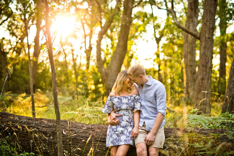 Forest photos engagement photography session sunset light through trees