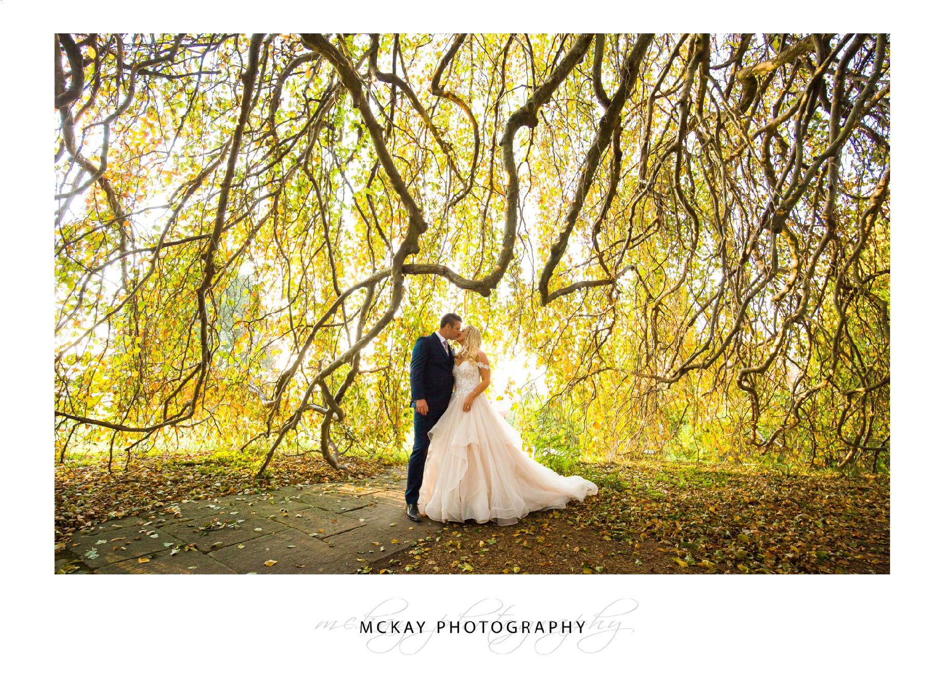 Milton Park wedding Bowral garden