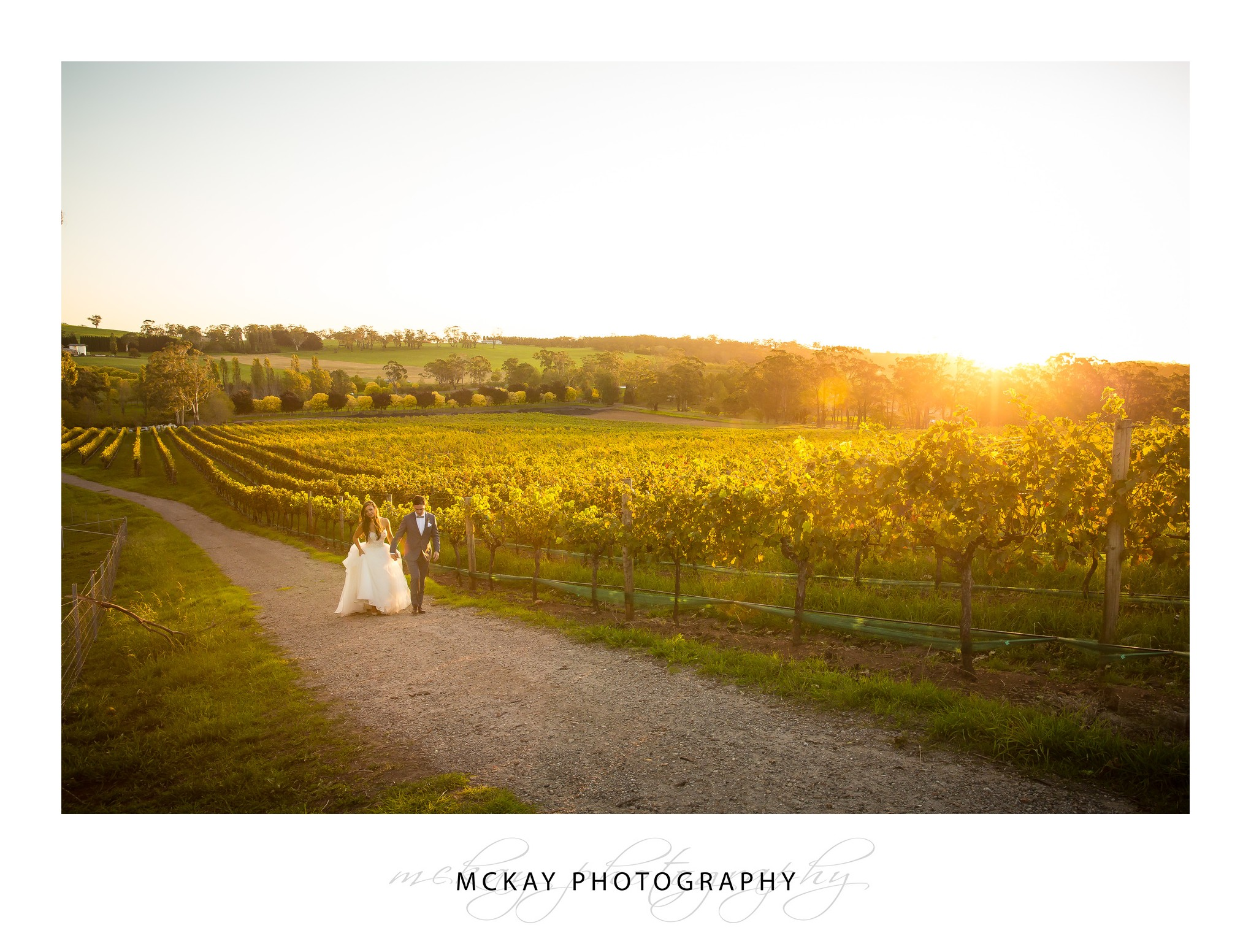 sunset Laura Paul wedding Centennial Vineyards Bowral